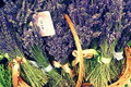 Lavender lavandula common name is a genus of known species of flowering plants in the mint family lamiaceae it is native to the Stock Images