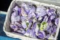Lavender sachets Royalty Free Stock Photo