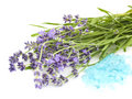 Lavender and sea salt Stock Photos