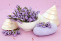 Lavender soap flowers and with mother of pearl shells over mottled lilac background Royalty Free Stock Photo