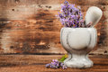 Lavender in a stone mortar Royalty Free Stock Photo