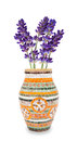 Lavender vase Stock Photos