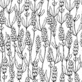 Lavender vector drawing seamless pattern. Isolated wild flower and leaves. Herbal engraved style background.