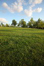 Lawn copenhagen suburb dawn Royalty Free Stock Photo