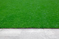 Lawn edge of trimmed green grass field Stock Photography