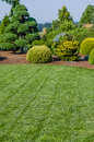 Lawn and landscaped garden green with bed Stock Image