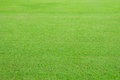 Lawn large in the capital Royalty Free Stock Image