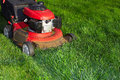 Lawn mower cutting green grass. Royalty Free Stock Photo