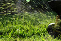 lawn mowing Royalty Free Stock Photo