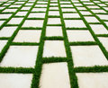 Lawn and rustic paving texture Stock Image