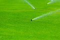 Lawn sprinkler spaying water over green grass. Irrigation system Royalty Free Stock Photo