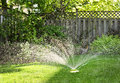 Lawn sprinkler watering grass Royalty Free Stock Images
