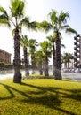 Lawn sprinkling in las americas resort tenerife canary islands spain Stock Photos
