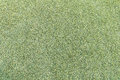 Lawn Texture Royalty Free Stock Photos