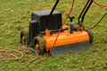 Lawn thatcher a in the garden Royalty Free Stock Image