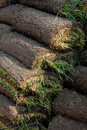 Lawn Turf Rolls Royalty Free Stock Photos