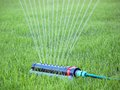 Lawn watering Royalty Free Stock Photo