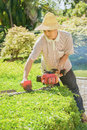 Lawnmower equates shrub in the xishuangbanna tropical flowers plants garden Stock Photo