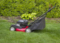 Lawnmower on grass yard horizontal photo of old gas with tall bushes and flower garden in background Stock Photo