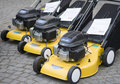 Lawnmowers Stock Image