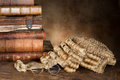 Lawyer s wig and books antique with old glasses Stock Photos