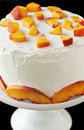 Layer cake with vanilla butter cream frosting and fresh sliced nectarines on white pedestal Royalty Free Stock Images