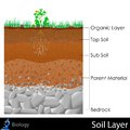 Layer of soil easy to edit illustration diagram for Stock Photos