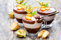 Layered   dessert with physalis on wooden table Royalty Free Stock Photo