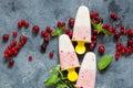 Layered vanilla and berry ice cream overhead shot Royalty Free Stock Photo