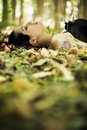 Laying girl on the forest Royalty Free Stock Photo