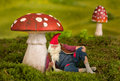Lazy garden gnome under toadstool Royalty Free Stock Photo