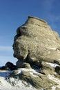 Le cadrage en pierre normal de sphinx Images stock