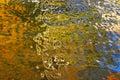 Le ciel et les lames se sont reflétés dans la surface de l'eau Photo stock