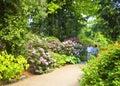 Le coppie anziane fanno una passeggiata nel giardino botanico di monaco di baviera Fotografia Stock