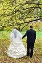 Le coppie hanno sposato appena Fotografie Stock