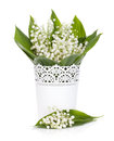 Le muguet Photo stock