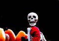 Le skellington de featherstone Photo stock