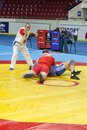Le tournoi international sur le sambo Image libre de droits