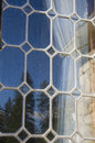 Leaded glass window reflects blue sky and trees an antique the green evergreen Stock Images