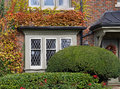Leaded glass window surrounded by ivy in fall colors Stock Photography