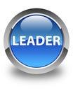 Leader glossy blue round button