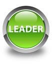 Leader glossy green round button