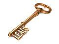 Leads golden key on white background d render business concept Royalty Free Stock Photography
