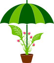 Leaf care logo Royalty Free Stock Photo