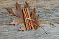Leaf with Cinnamon Sticks on Wood Background Royalty Free Stock Photo