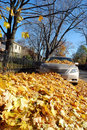 Leaf covered car Royalty Free Stock Images