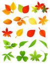 Leaf icon set Stock Images