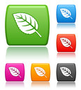 Leaf icons Stock Image