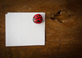Leaf ladybird and paper on wooden background Royalty Free Stock Image
