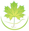 Leaf logo Stock Photography